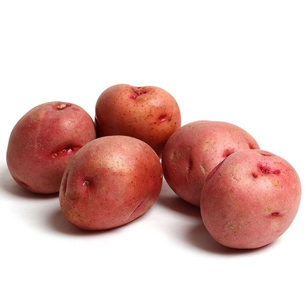 New Harvest Red Potatoes (Maria)