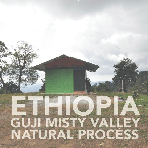 Ethiopian 'Guji' Misty Valley | Natural