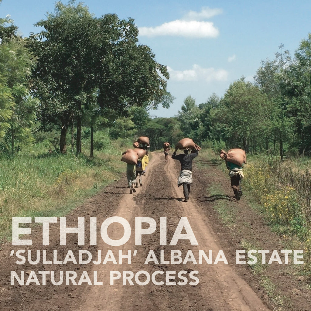 Ethiopian 'Sulladjah' Abana Estate | Natural