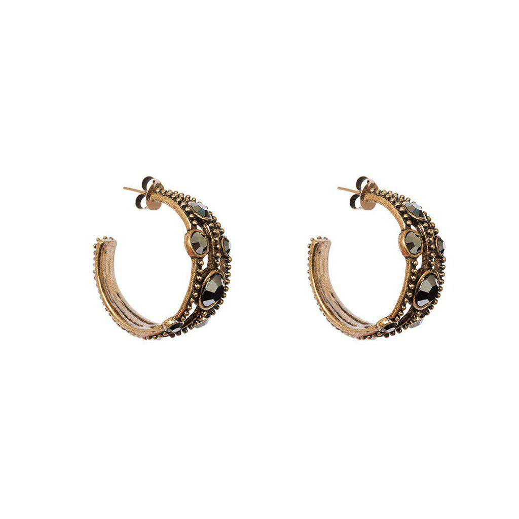 ANALU SWAROVSKI CRYSTALS HOOP EARRINGS