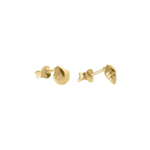 CARMA SHELL 1-MICRON GOLD STUD EARRINGS