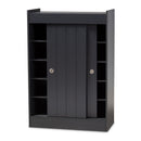 Leone Charcoal 2-Door Wood Entryway Storage Cabinet