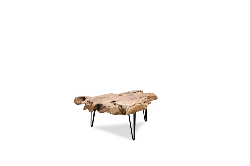 Nala Coffee Table