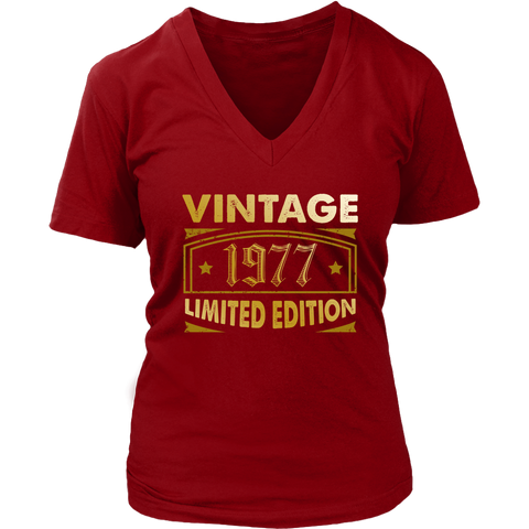 Women's Vintage 1977 41 Year Old Birthday Gift V-Neck T-Shirt