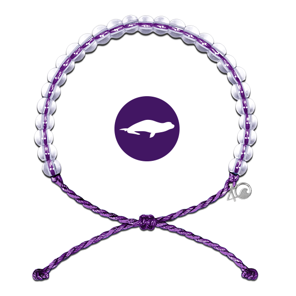 Pulsera Monk Seal