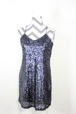 Express Size Small Sequin Dress