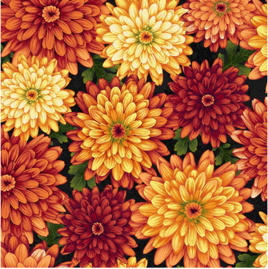 Chrysanthemums, Autumn Album, Fall Fabric, Black background
