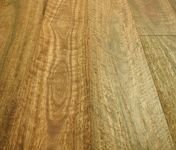 Preference Select Australian Spotted Gum