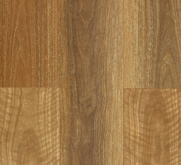 Aspire NSW Spotted Gum