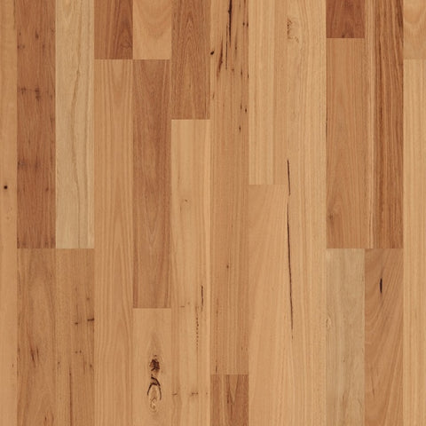 Readyflor Blackbutt 2 strip