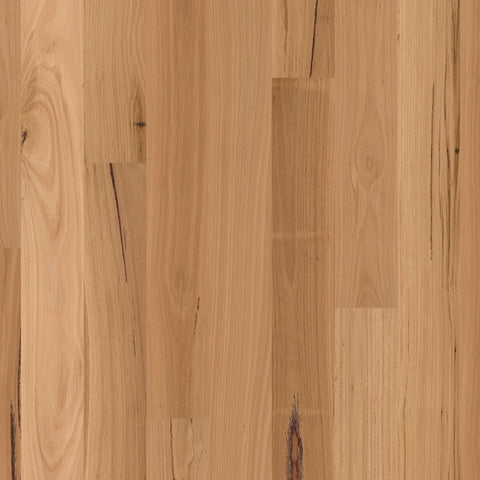 Readyflor Blackbutt 1 Strip