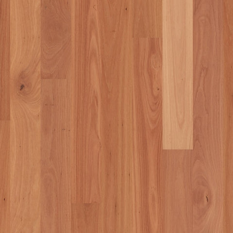 Readyflor Sydney Blue Gum 1 strip