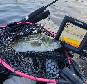 Catching bass from a kayak using a depth sounder