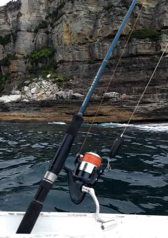 Downrigger shop 802 light combo