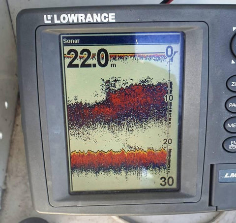 Baitball being shown on lowrance sounder