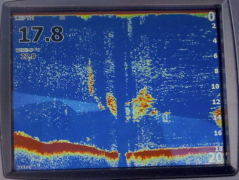 Fish sign showing on depth sounder