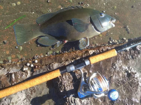 The Stickbait fishing combo is great for keeping fish away for the rocks when bringing them in
