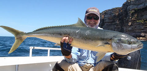 A huge Kingfish caught jigging with the 24 kilo jigging combo off Vaucluse