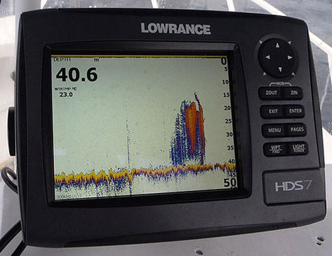 The Annie Miller wreck showing good sign on the sounder