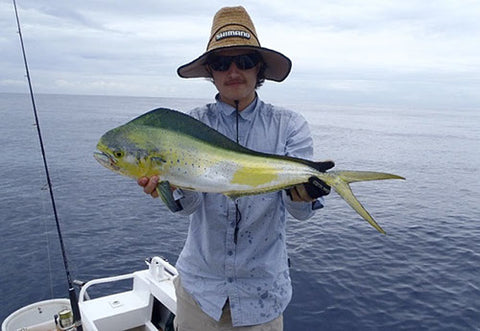 Mahi Mahi are such good eating fish