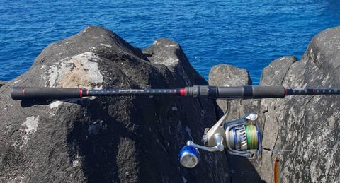 Sea bass ultimate ryobi combo ready for inshore microjigging
