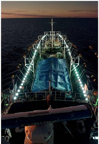Commercial fishing ship set up with lights for squid