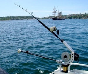 Trolling with live bait on a downrigger inside the harbour