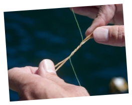 Wrapping one rubber band loop down the fishing line two to three times