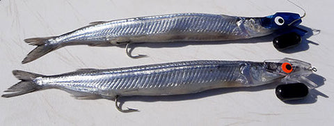 Dead frozen Garfish rigged for trolling on head starts lures