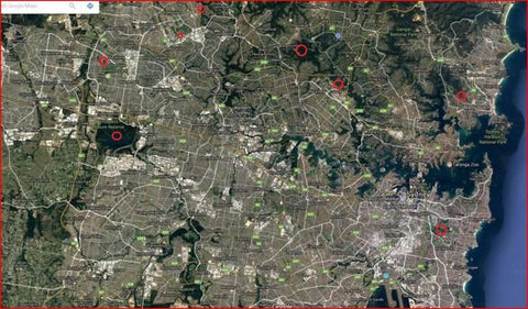 Carp fishing spots in Sydney, Australia