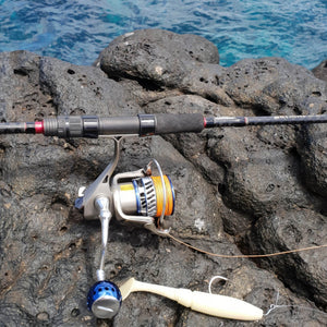 Ryobi reel on the Infinite Seabass rod with large soft plastic