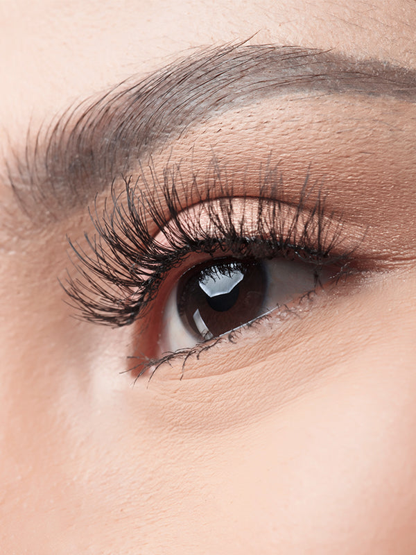 Poised Lashes BLP Beauty