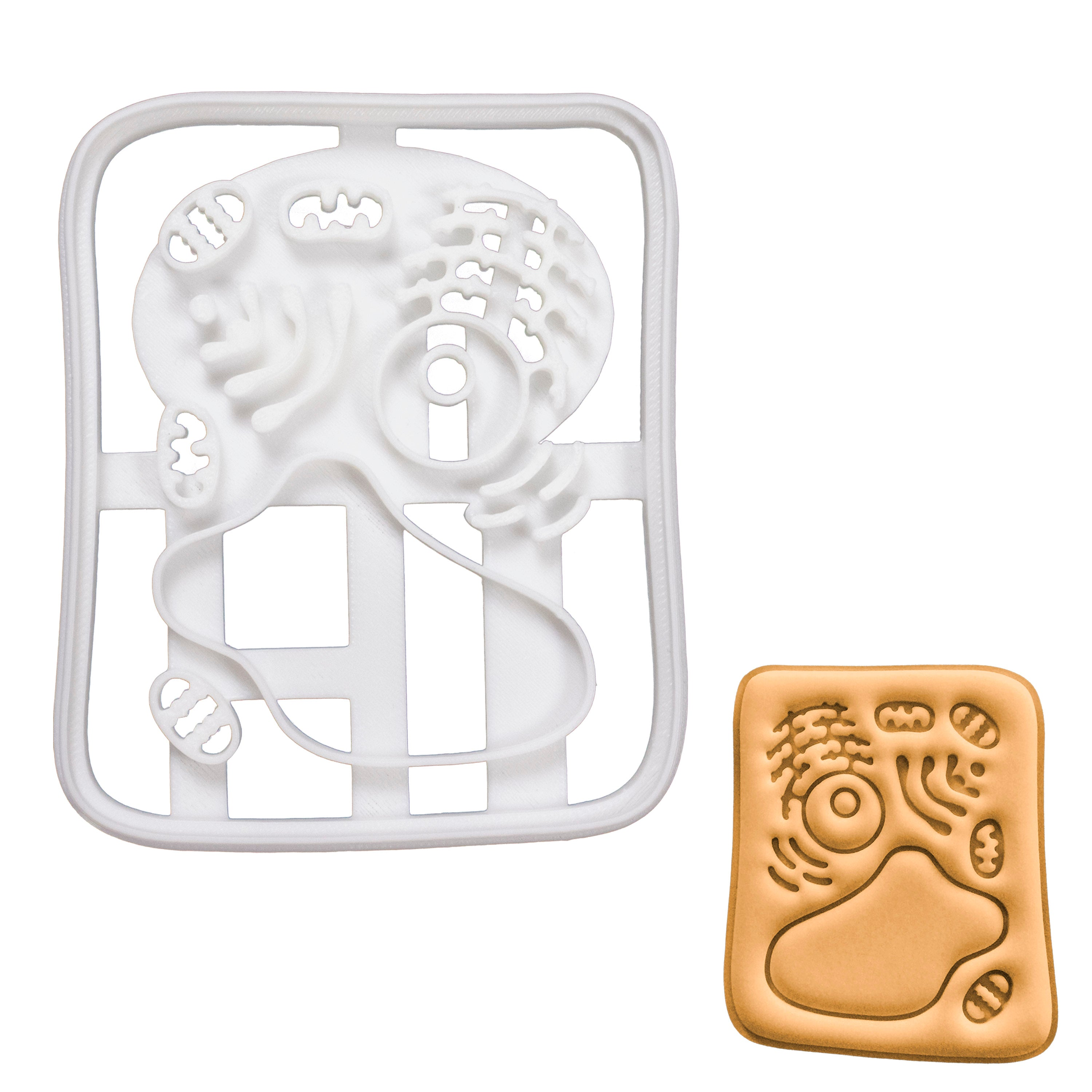 Plant Cell Cookie Cutter
