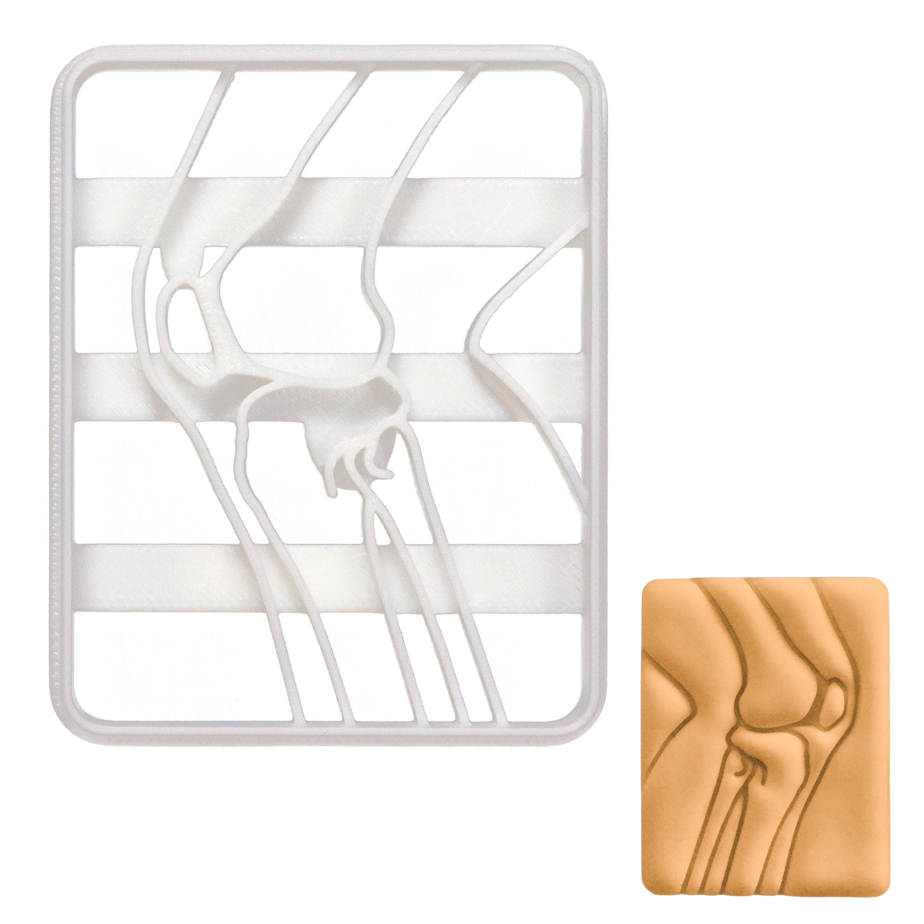 x-ray knee bone cookie cutter