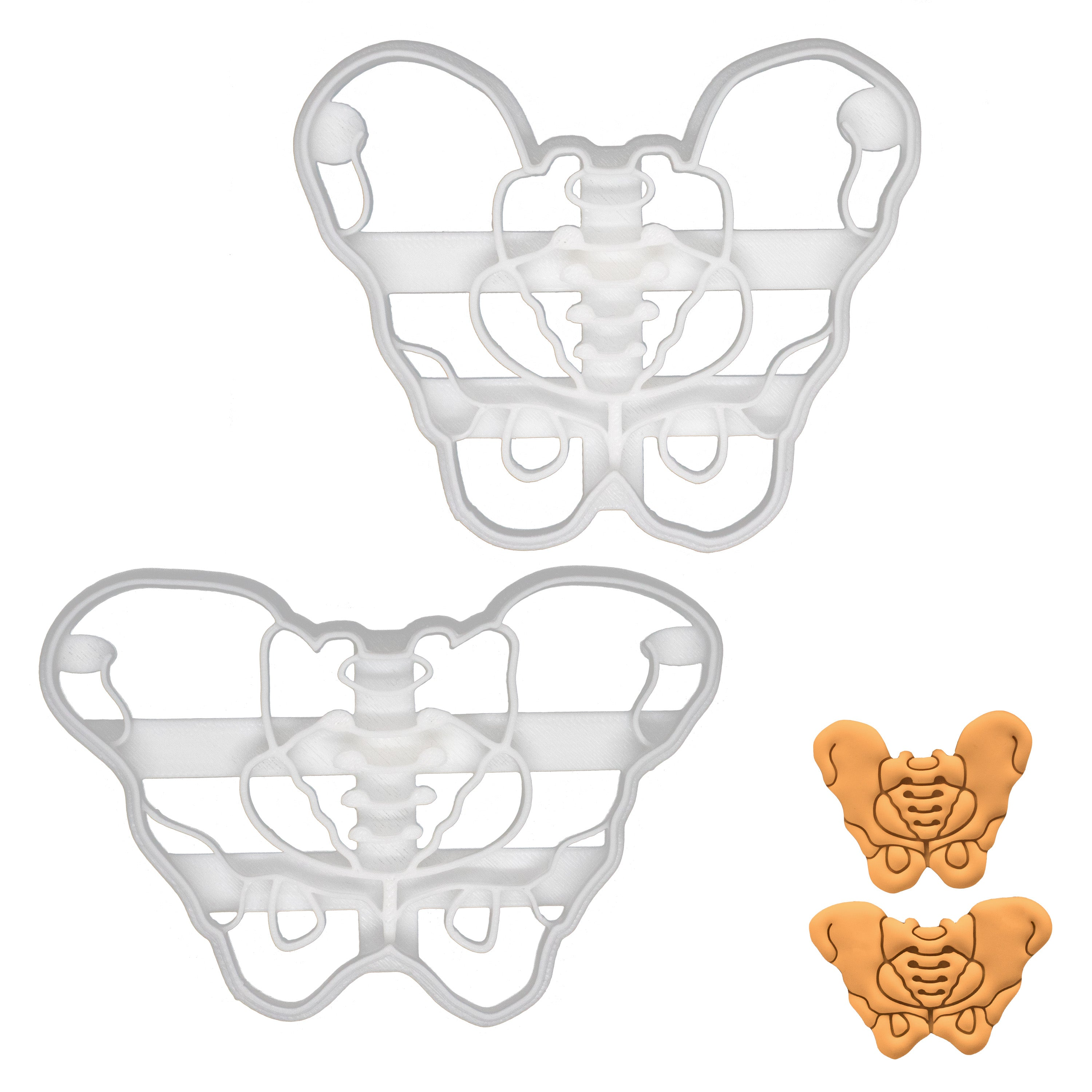 set of 2 male and female pelvis cookie cutters