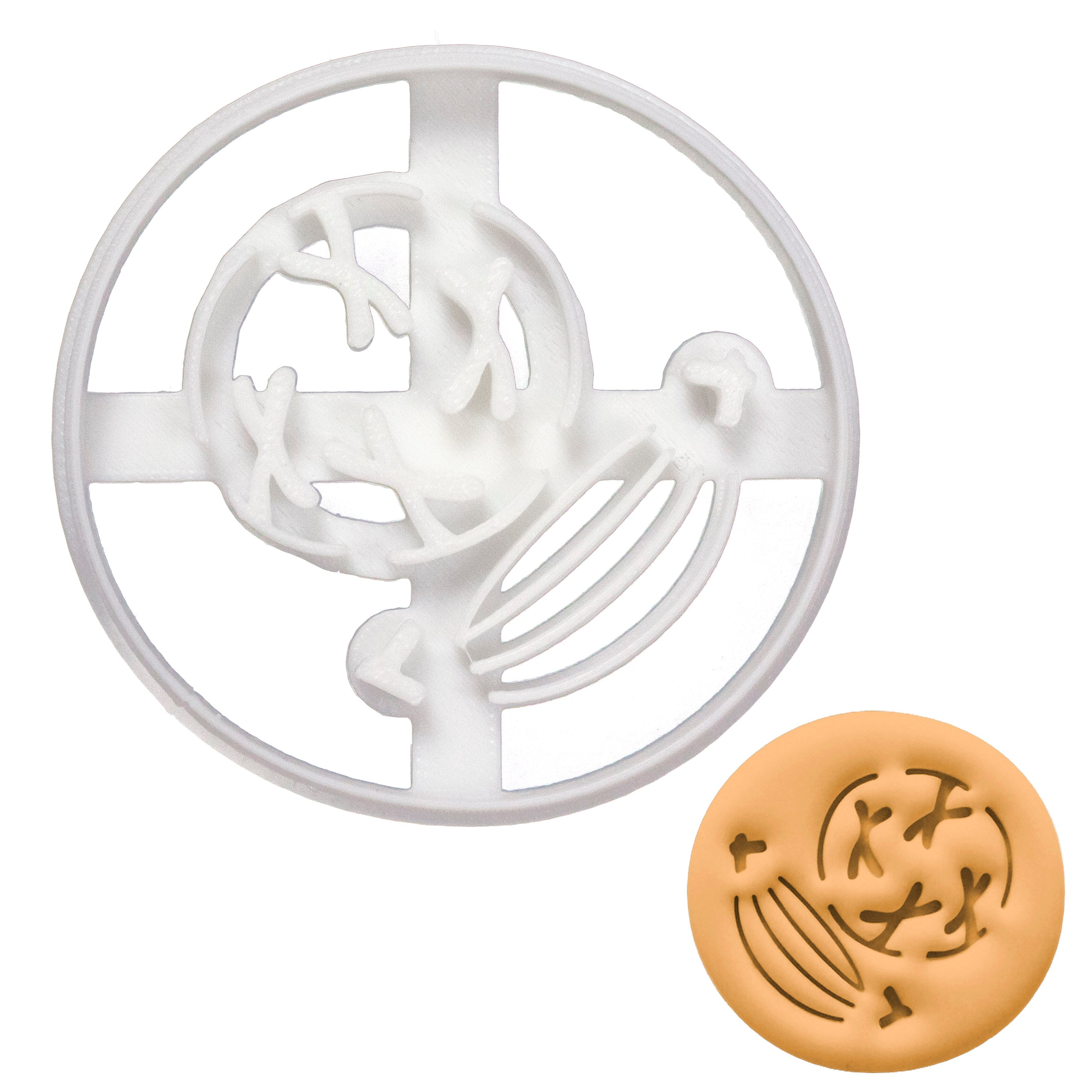 prophase mitosis cookie cutter