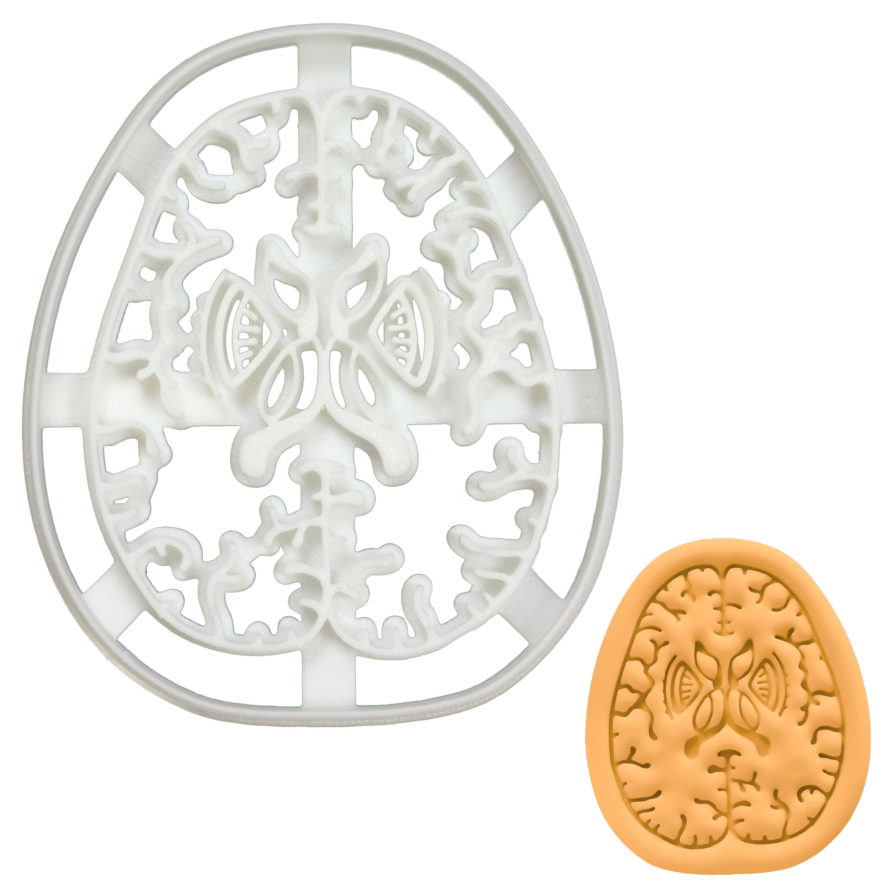 Brain Axial Section Cookie Cutter