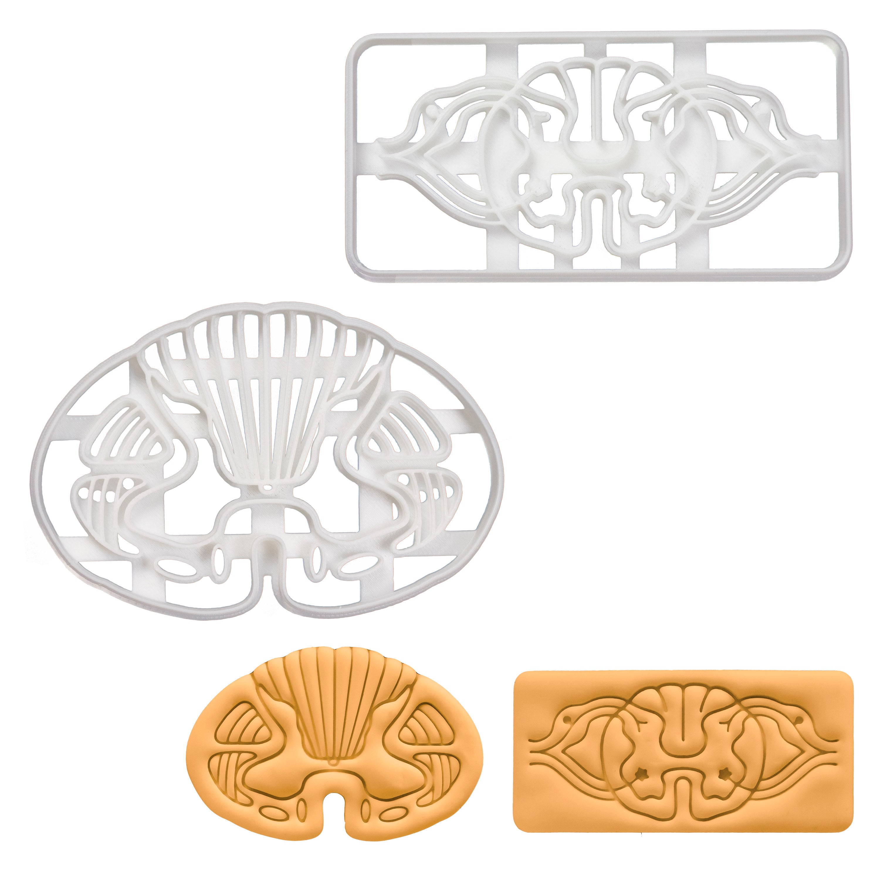 Set of 2 Cookie Cutters: Spinal Neuro Path & Spinal Transverse