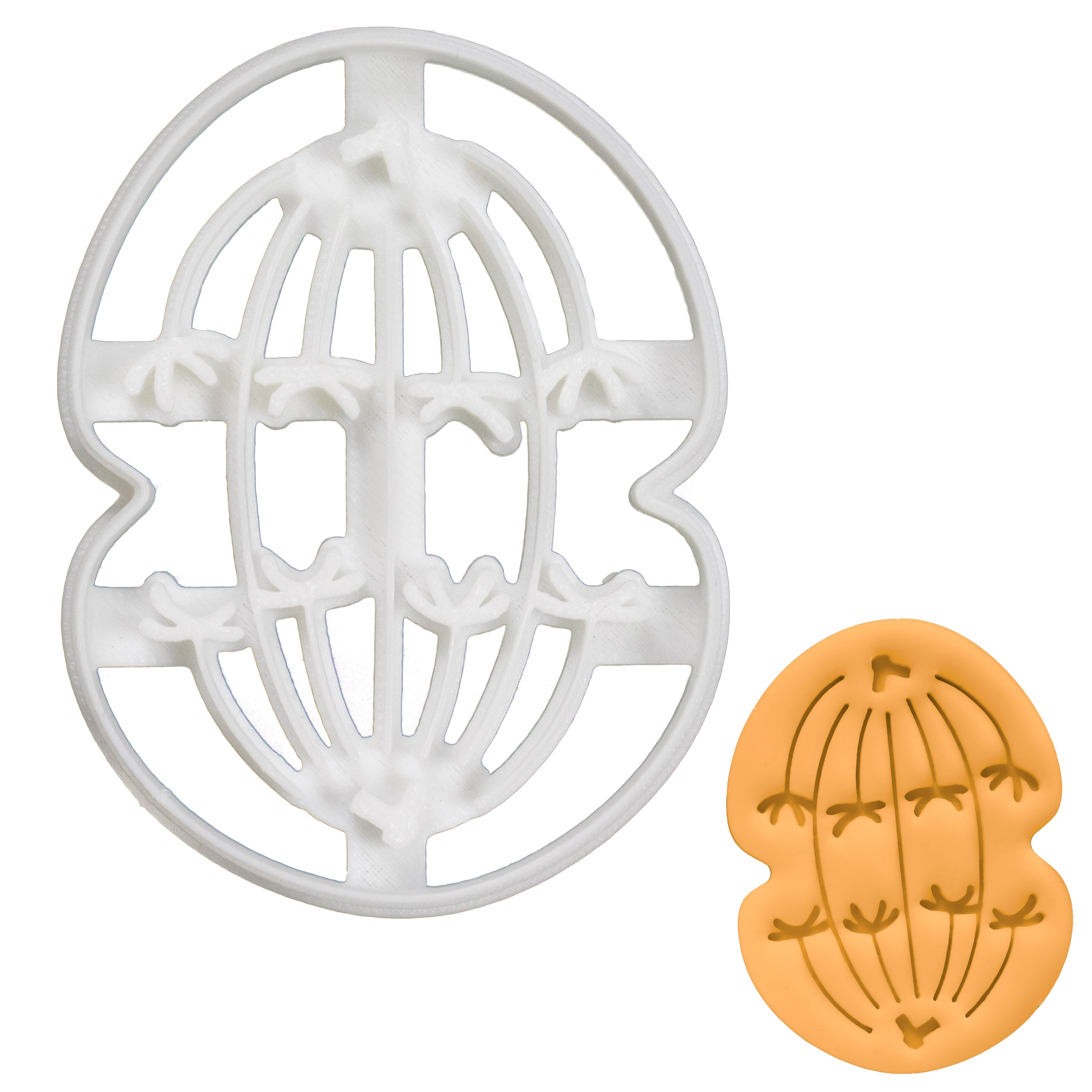 Meiosis I Anaphase I Cookie Cutter
