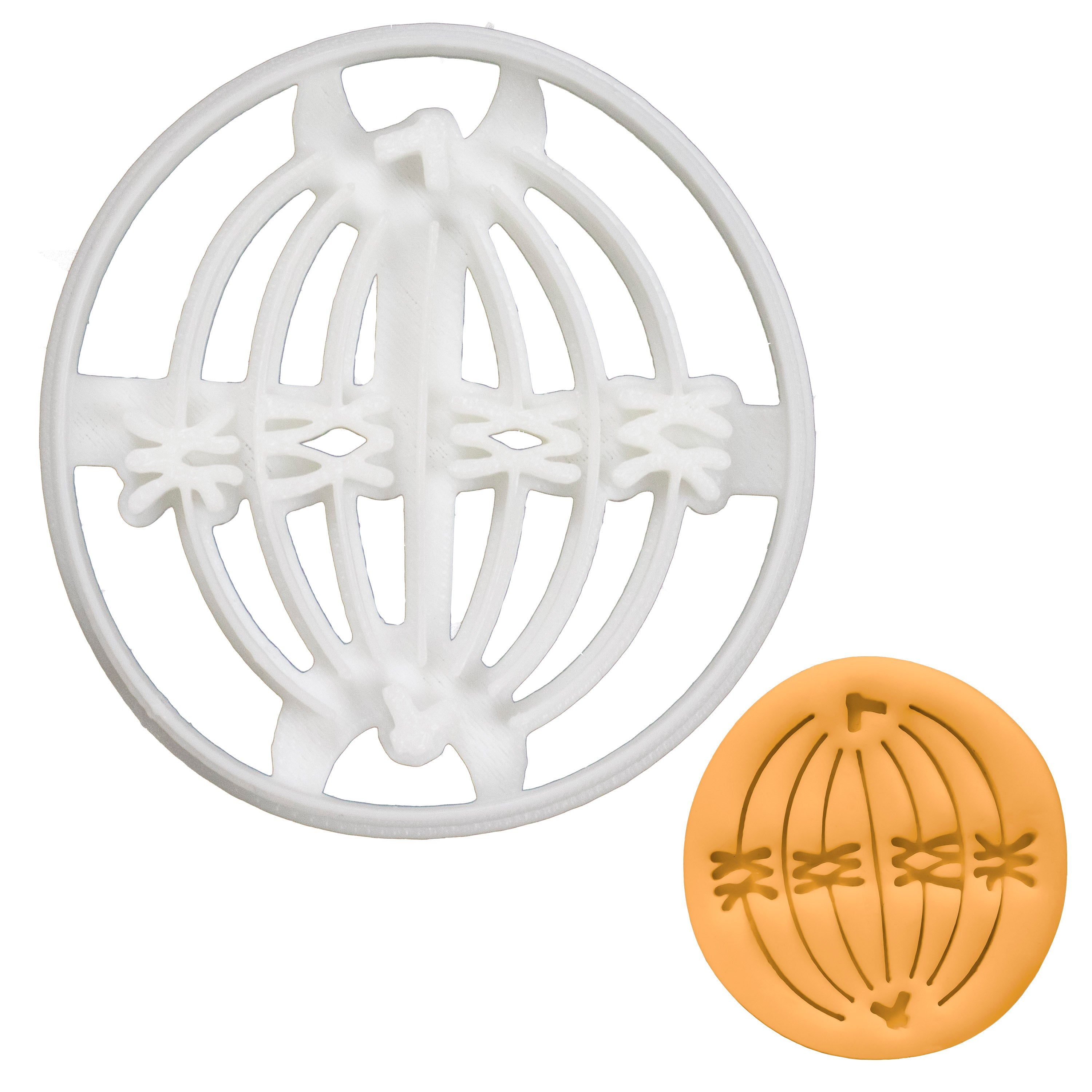 Meiosis I Metaphase I Cookie Cutter
