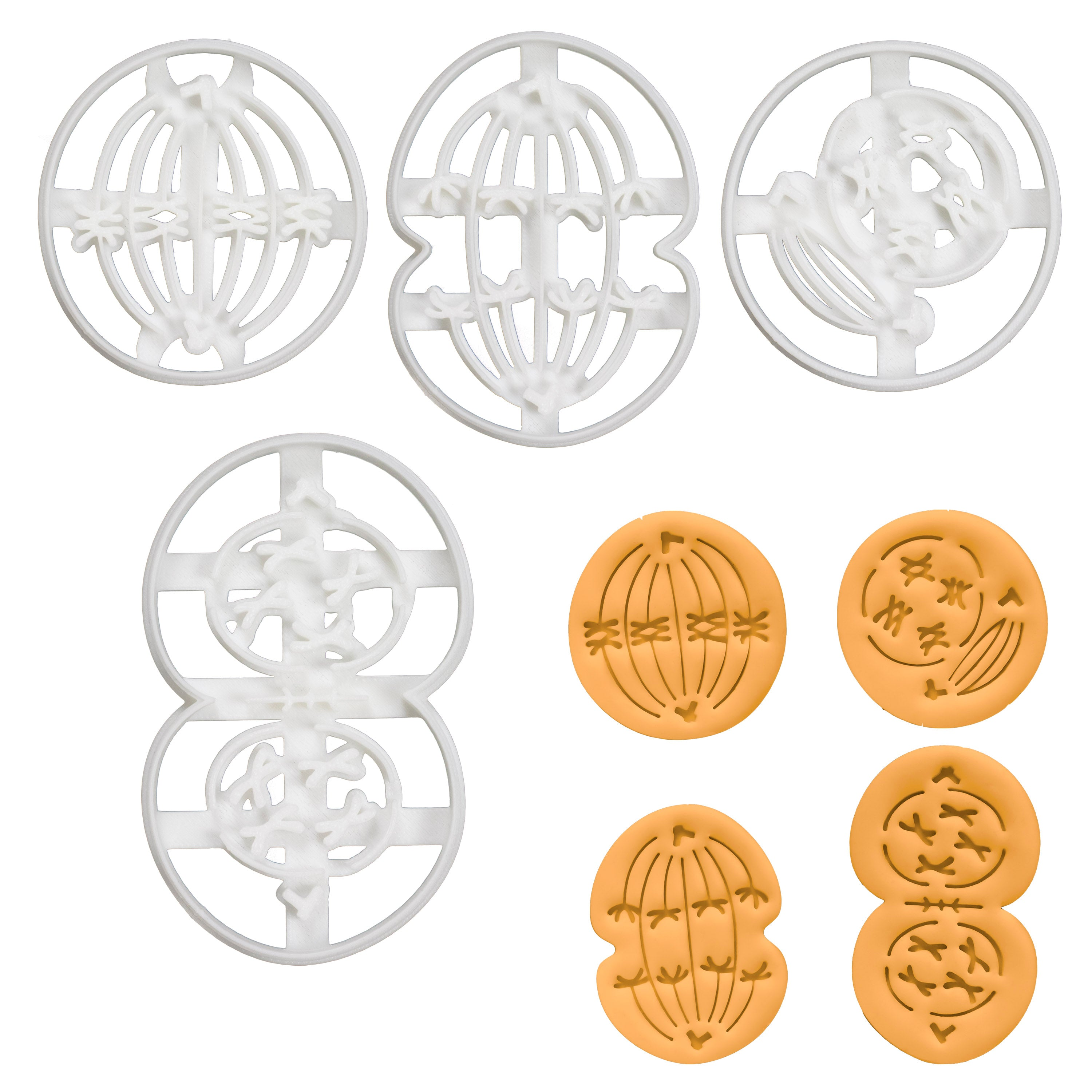 Set of 4 Meiosis I Cookie Cutters