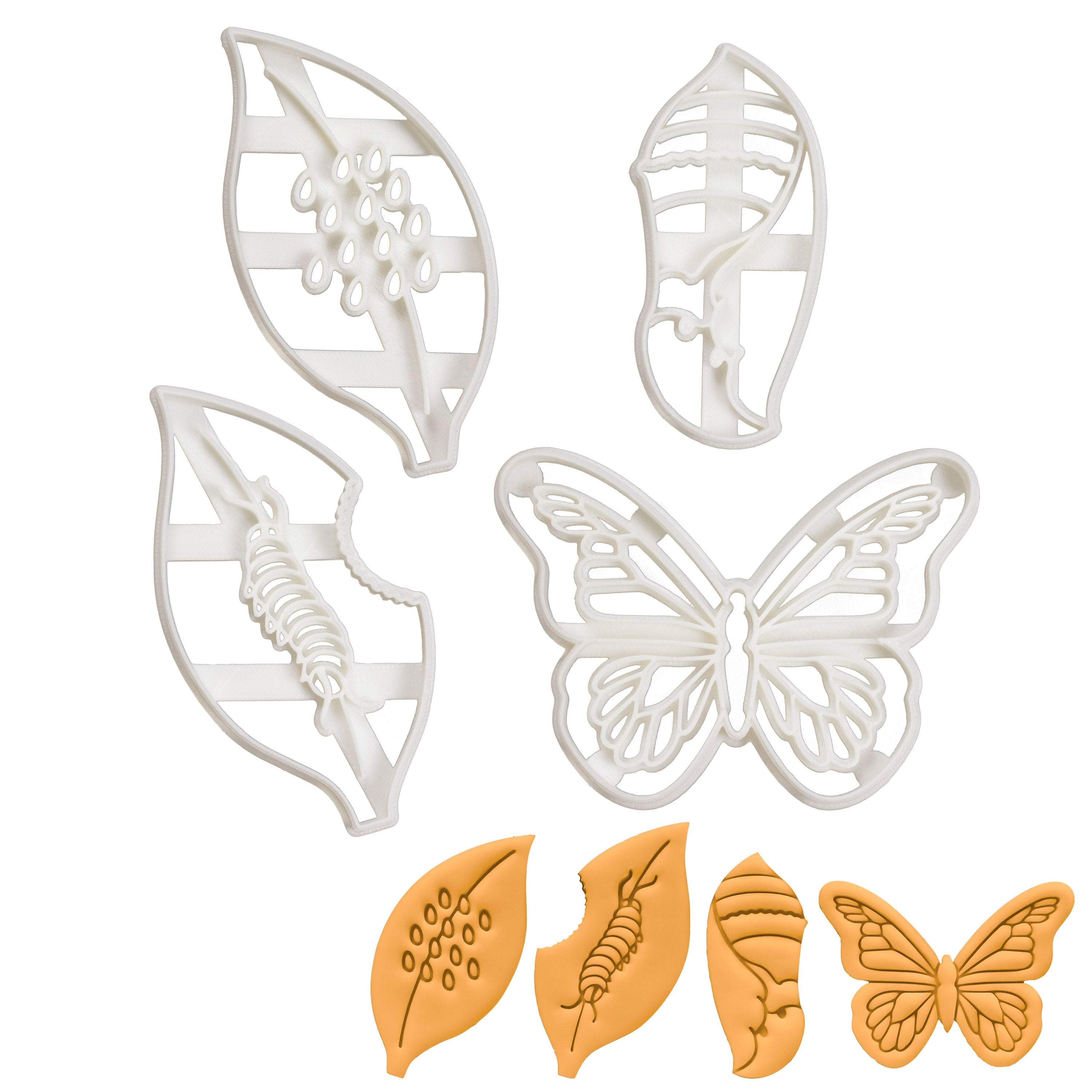 Set of 4 Monarch Butterfly Life Cycle Cookie Cutters