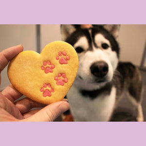 husky with heart paw prints cookie cutter