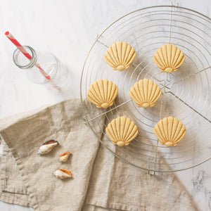nautical seashell cookies