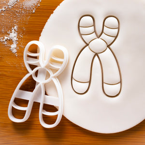 chromosome y cookie cutter