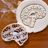 anatomical brain cookie cutter
