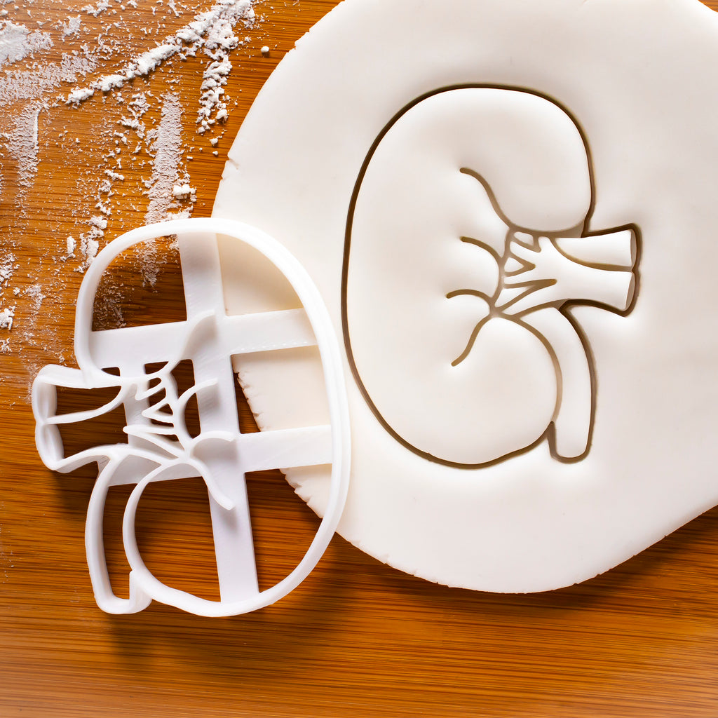 External Kidney Cookie Cutter