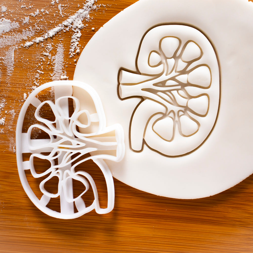 Internal Kidney cookie cutter