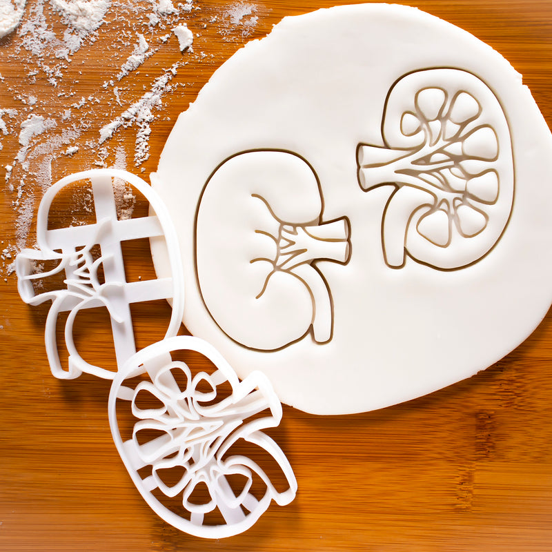 Set of external and internal view of kidneys cookie cutters
