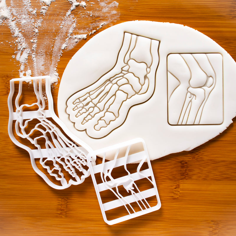 Size of X-Ray Knee Bone and Anatomical Human Foot Cookie Cutters